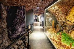 muzeum-ochrany-prírody-a-jaskyniarstva-jaskyne