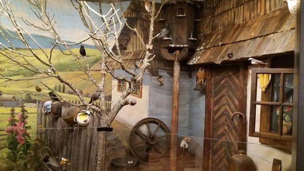 smopaj domcek, muzeum ochrany prirody a jaskyniarstva v Liptovskom Mikuláši, smopaj