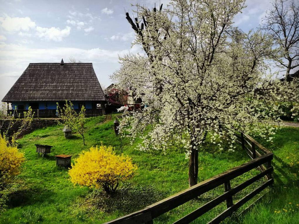travelfansk muzeum ľudovej architektury Užhorod uzgorod