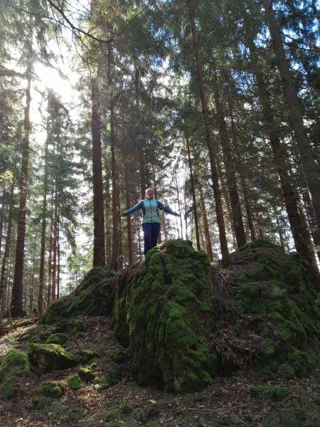 obrovské skaly v lese
