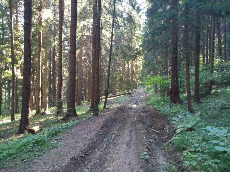 cesta lesom ku Komjatskej hojdačke lásky