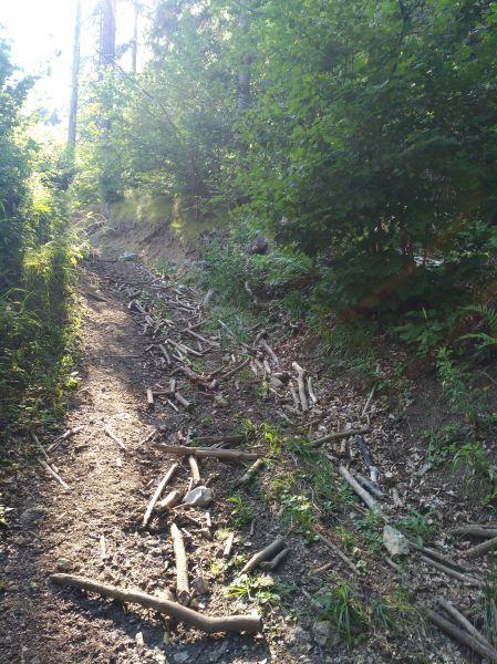 Posledný úsek lesnej cesty pred Komjatskou hojdačkou Lásky
