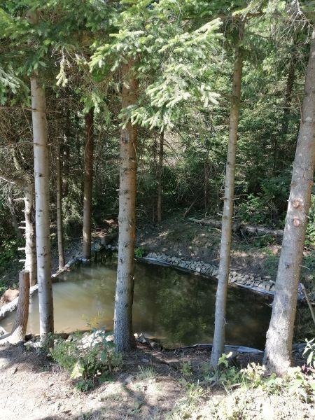 jazierko pod hojdačkou Zázrivá